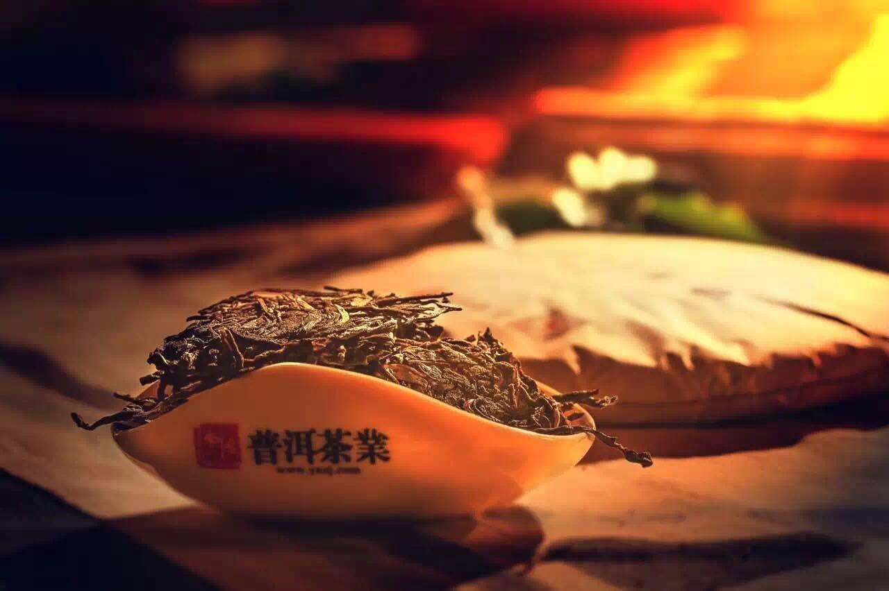第三届中国(廊坊)茶叶茶文化博览会--异度陈香重磅来袭!!