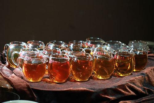 新茶价格扶摇直上 古树普洱将成奢侈品