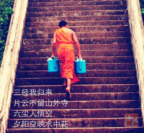 《长句与晴皋索普洱茶》