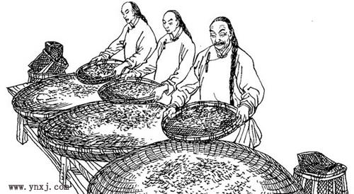 中国民间茶谚集